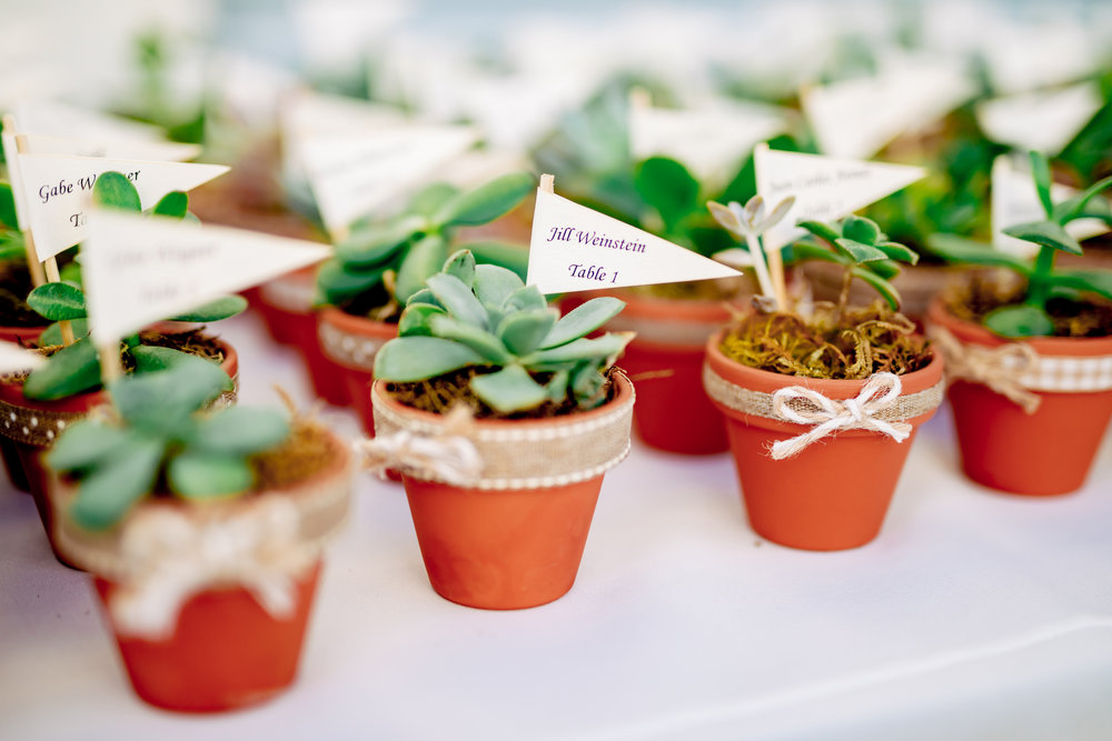 www.santabarbarawedding.com | Rewind Photography | Santa Barbara Sea Center | Events by Fran | Escort Succulents