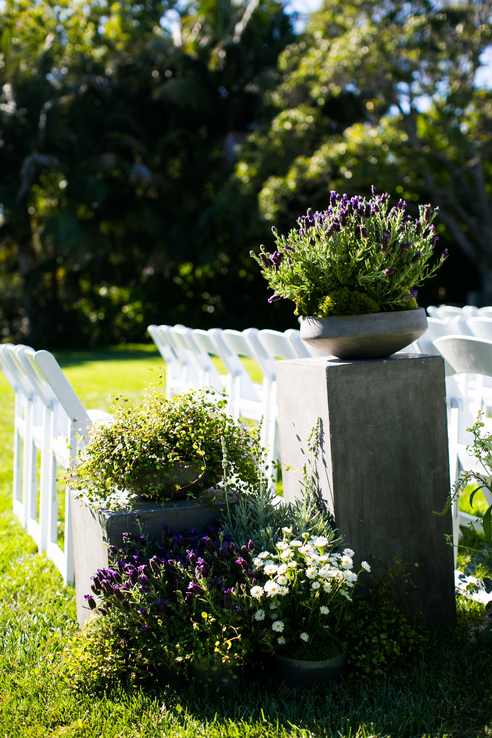 www.santabarbarawedding.com | Four Seasons Santa Barbara | Levine Fox Events | Callaway Gable Photo | Ceremony Details