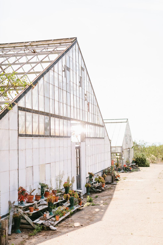 www.santabarbarawedding.com | Jodee Debes | Dos Pueblos Orchid Farm