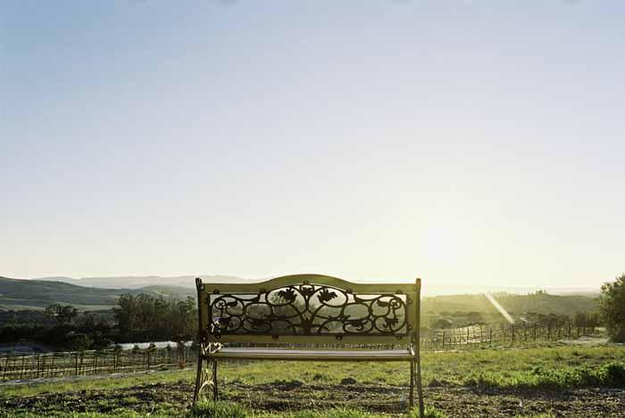www.santabarbarawedding.com | Soigne Productions | Cebada Winery | Michael and Anna Costa