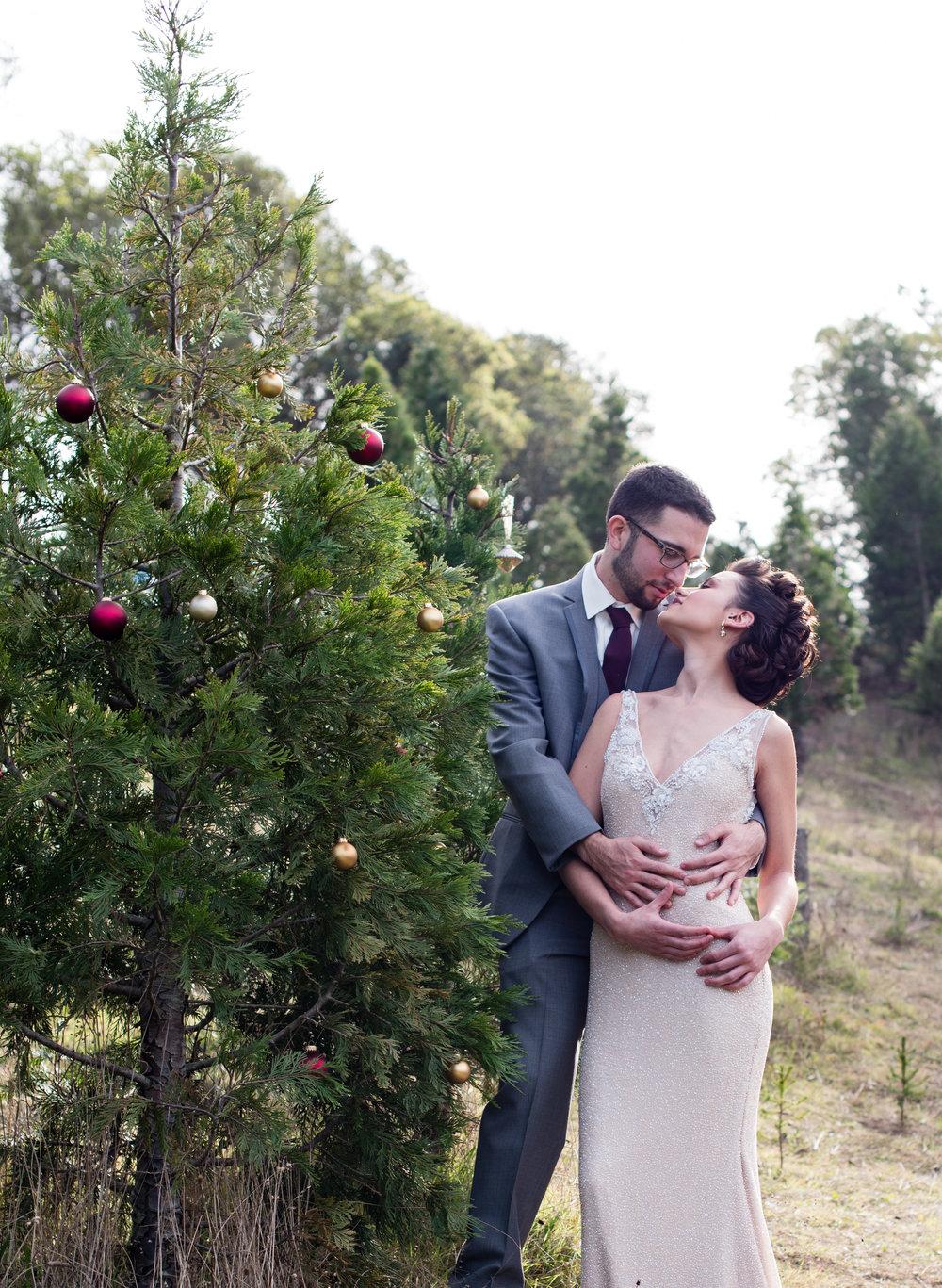www.santabarbarawedding.com   Carrie Pollard Photography   Church's Christmas Trees   Bride and Groom and Christmas Tree