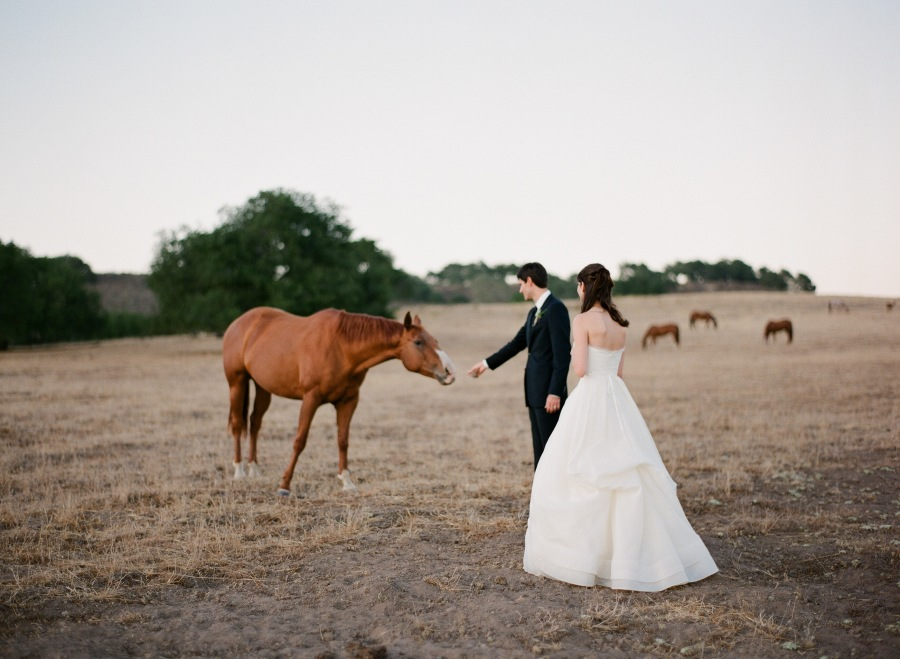 www.santabarbarawedding.com | Soigne Productions | Michael and Anna Costa | Zaca Creek Ranch | Bride and Groom and Horse