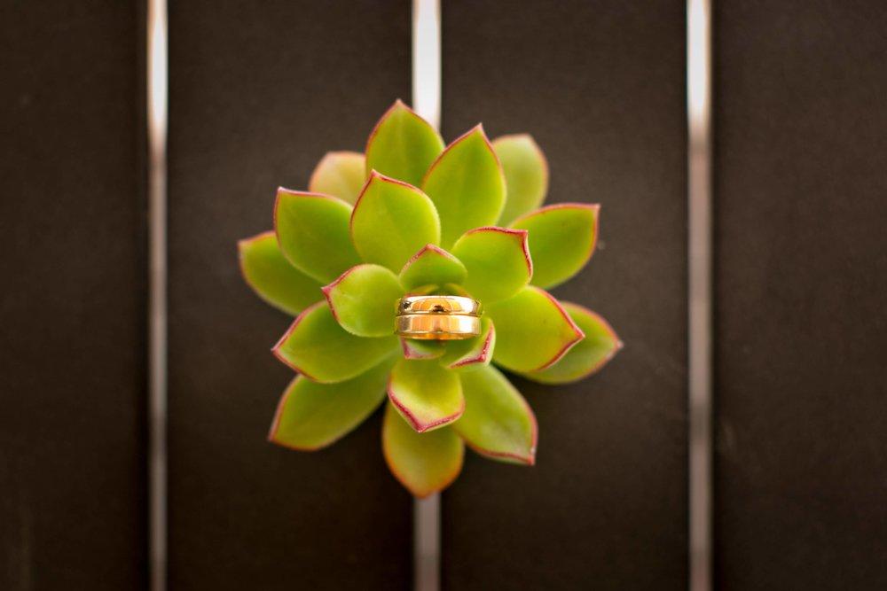 www.santabarbarawedding.com | Presqu'ile Winery | Allyson Magda | Wedding Rings