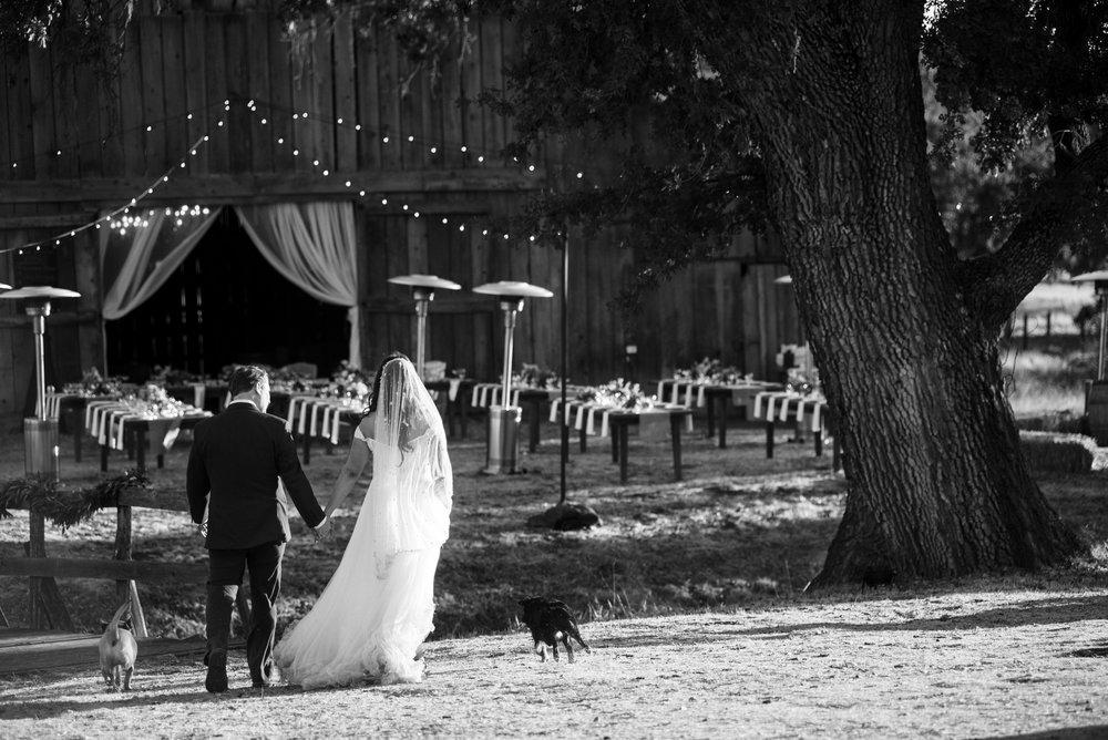 www.santabarbarawedding.com | ByCherry Photography | Gainey Vineyard | Revele Unlimited | Bride and Groom
