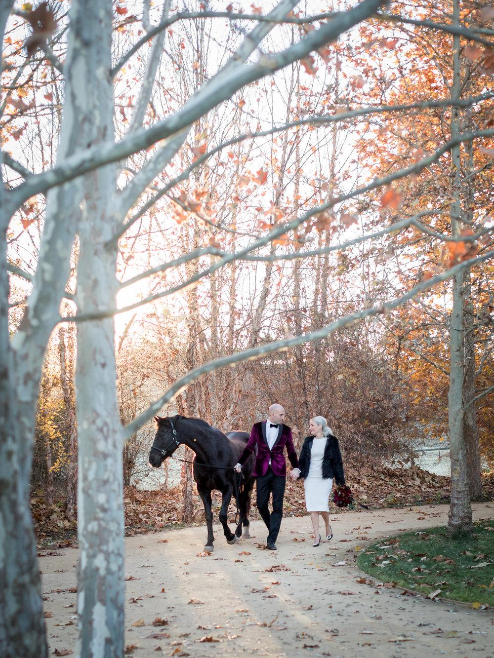 www.santabarbarawedding.com | Kiel Rucker | Santa Barbara Elopement | Kestrel Park | Bride and Groom and Horse