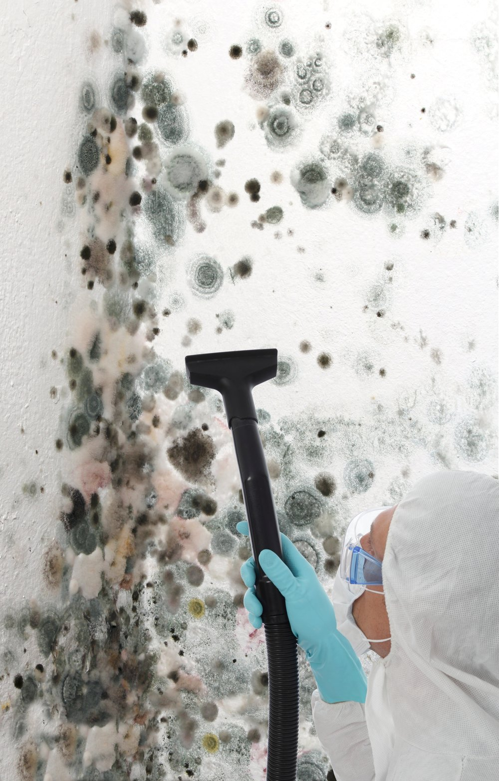 stock-photo-professional-man-in-protective-clothing-using-a-mechanical-cleaner-or-steamer-to-clean-mold-growth-104287211.jpg
