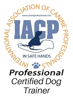 Certified Dog Trainer.jpg