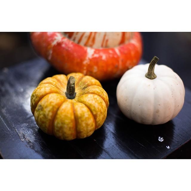 Happy Halloween everyone 🎃 🎃 🎃 Enjoy making your jack-o'-lanterns, we prefer to eat our beautiful pumpkins!  @vikks_photography  #halloween #pumpkin #walthamstow #e17 #vegan #vegetarian #vegetarianlondon #veganlondon #instapic
