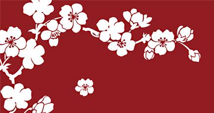 A lone cherry blossom falls...