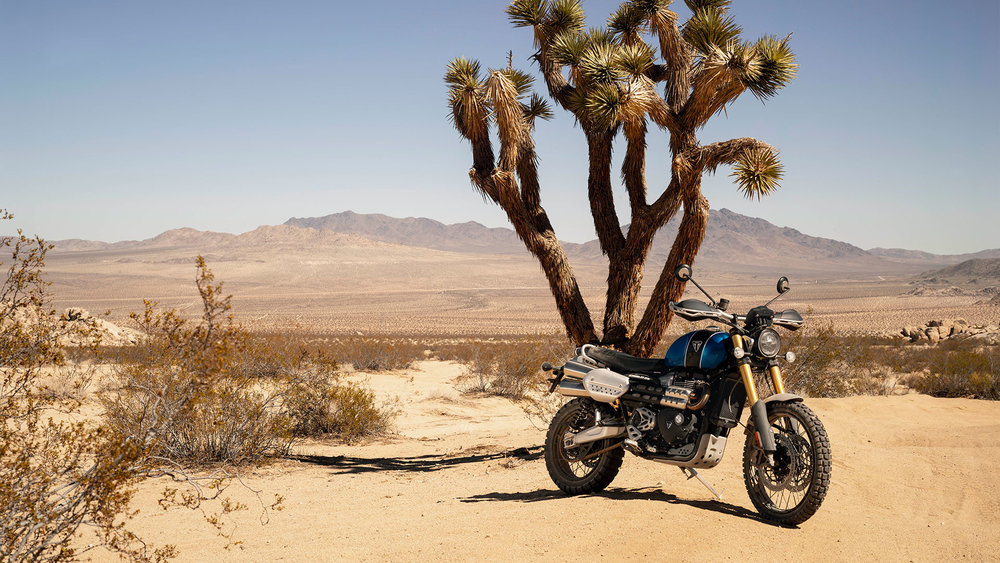 A Triumph Scrambler 1200 XE in its natural habitat
