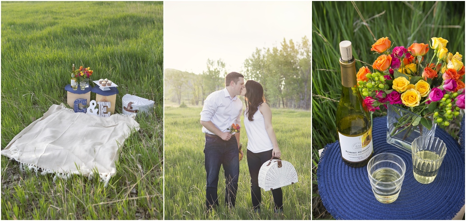 Chatfield State Park Engagement Session