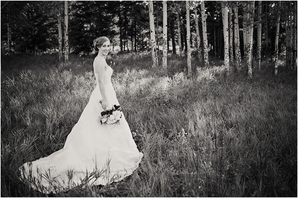 Meadows at Marshdale Wedding Photography