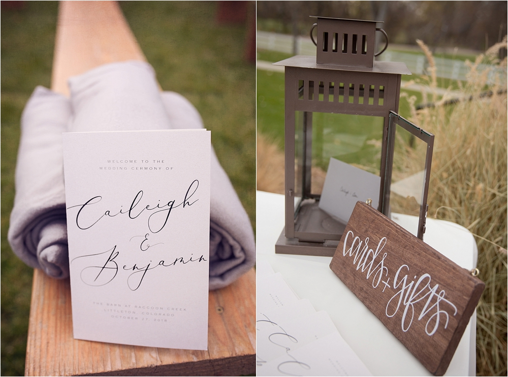 Caileigh and Ben's Wedding_0022.jpg
