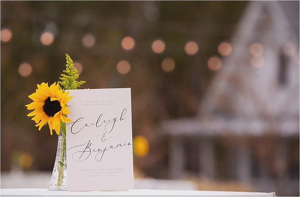 Caileigh and Ben's Wedding_0035.jpg