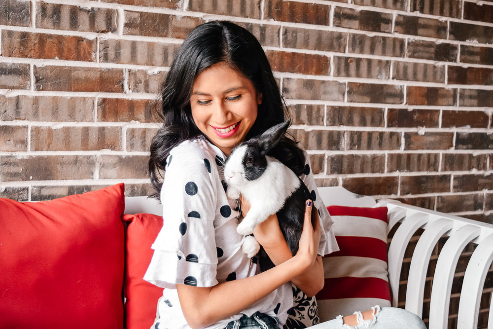 Rehoming pets