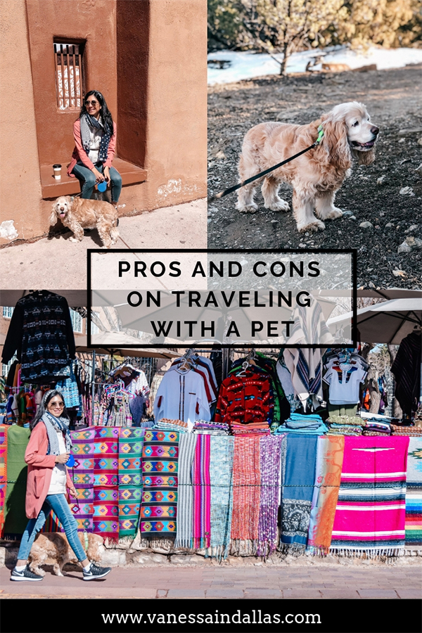 Pros and Cons on Traveling with a Pet on Pinterest