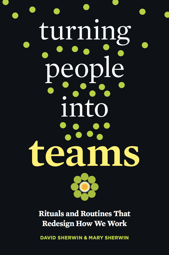 Turning People into Teams Book Cover
