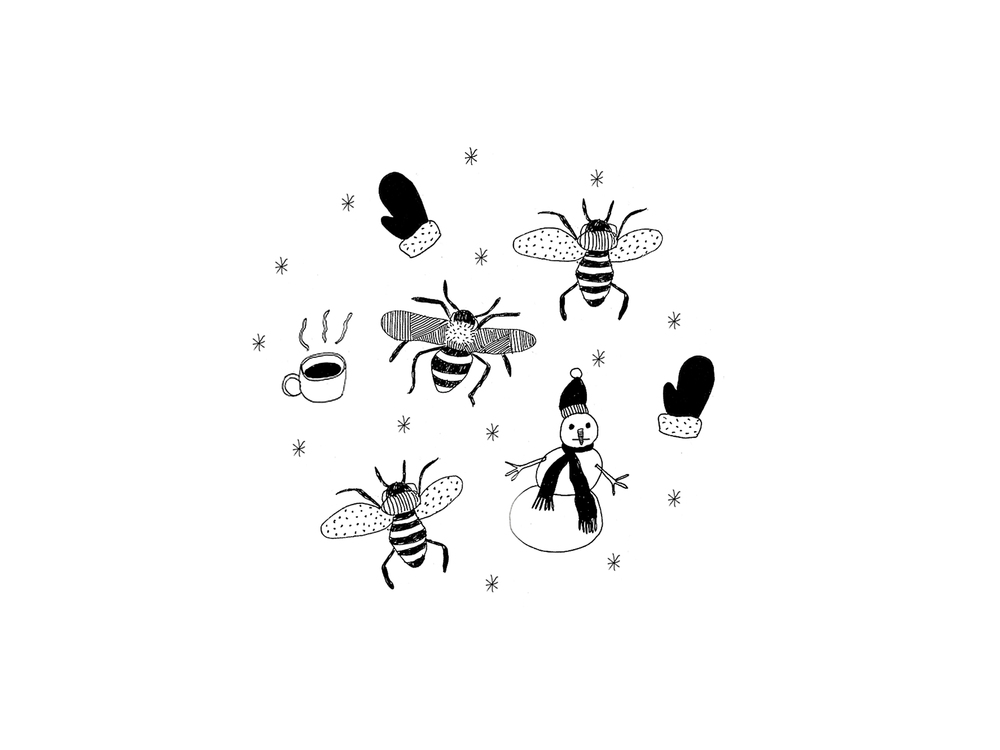 This is an illustration of the movie title  Winter Bees