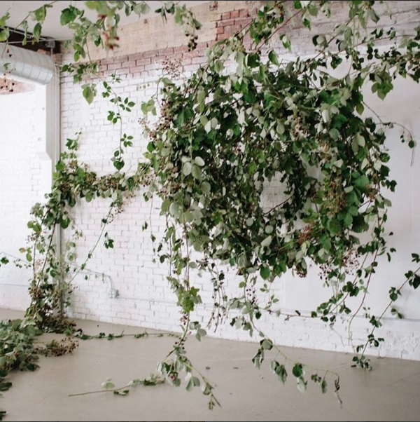 Blackberry Installation in a warehouse space by Sarah Winward