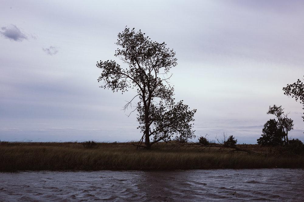 Illinois Beach State Park, 2018