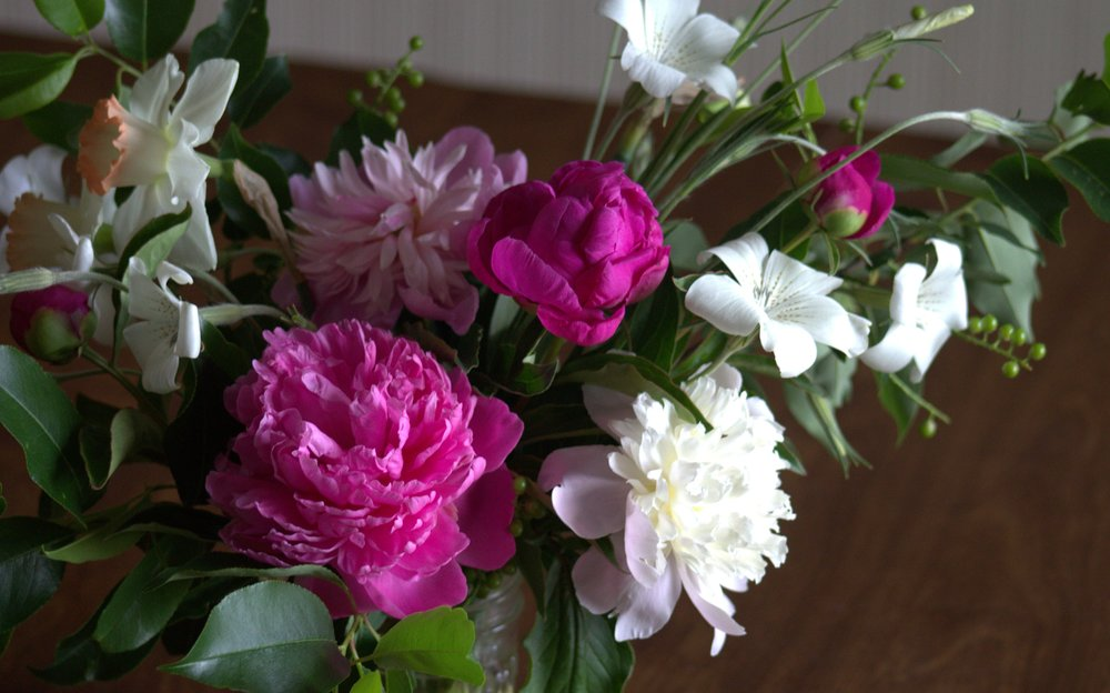 Peonies with Narcissus, Agrostemma, & foraged greens