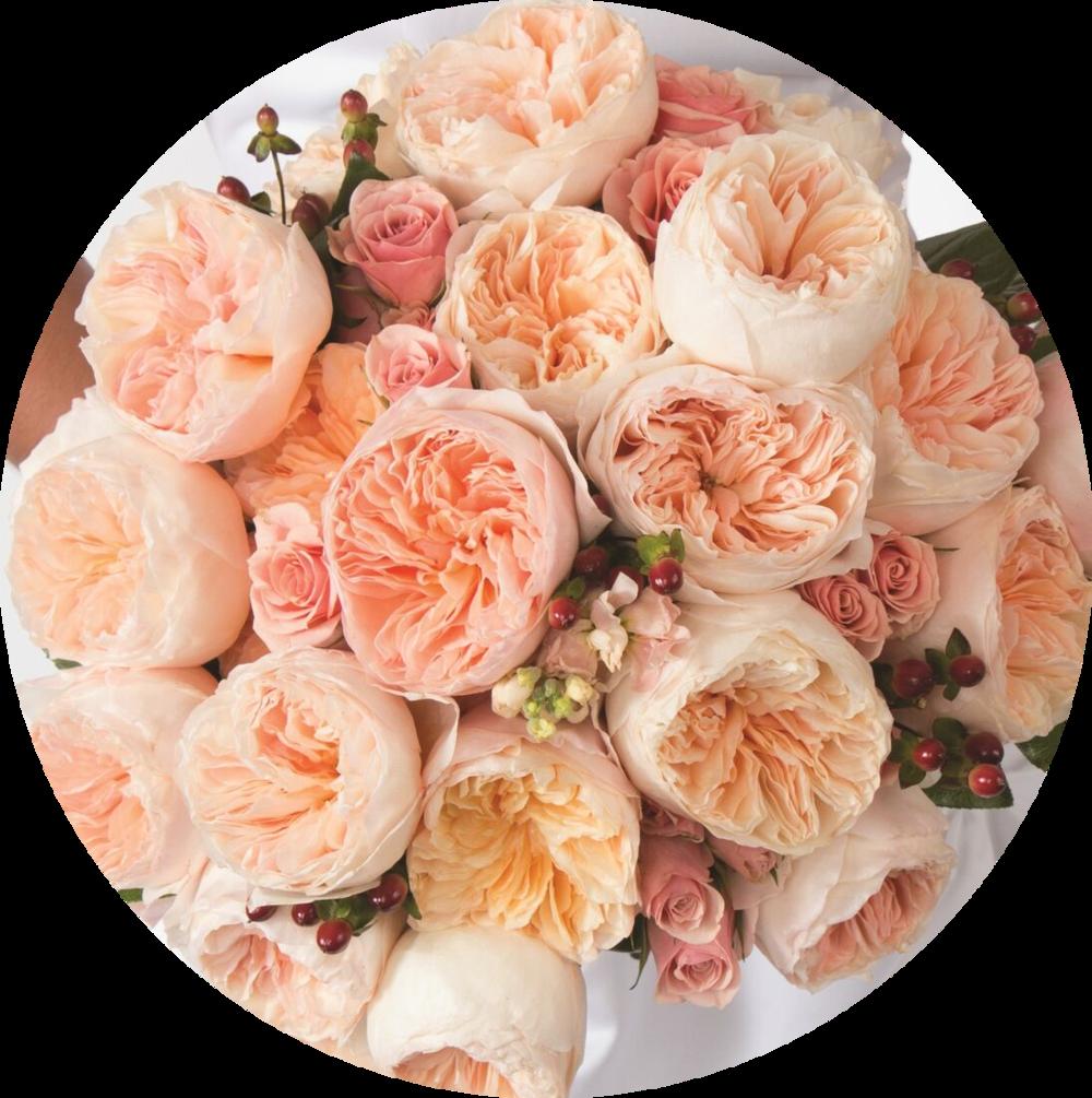 Juliet Bride Bouquet_preview.png