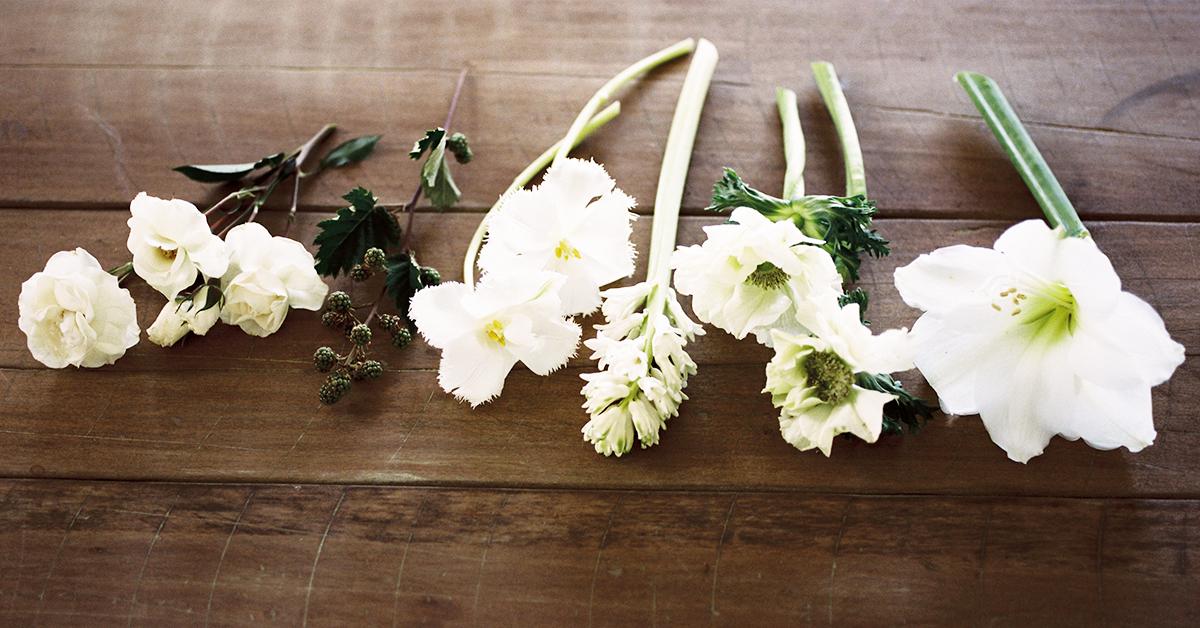 Sierra Flower Finder from Team Flower