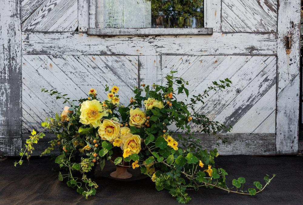 0031_Floral_160510_1915.jpg
