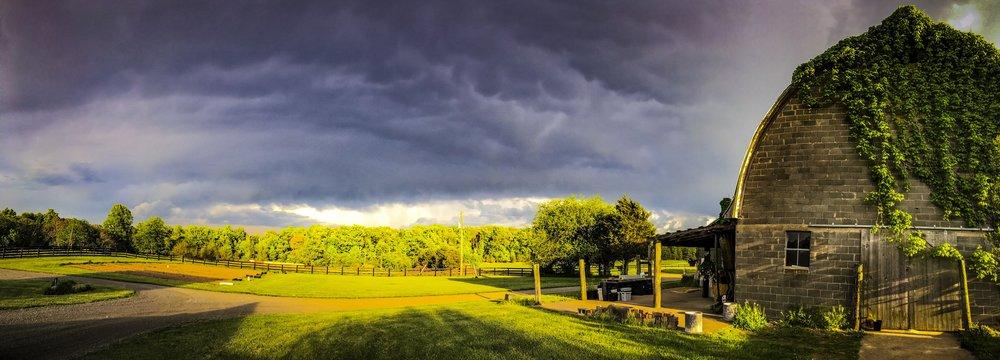 Lou Gagnon - Lou Gagnon- Farm View 4.jpg
