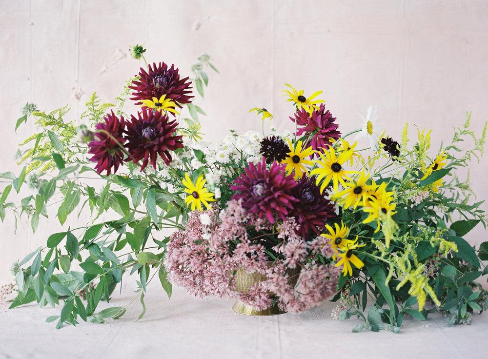 plantspiritmedicineclt5.jpg