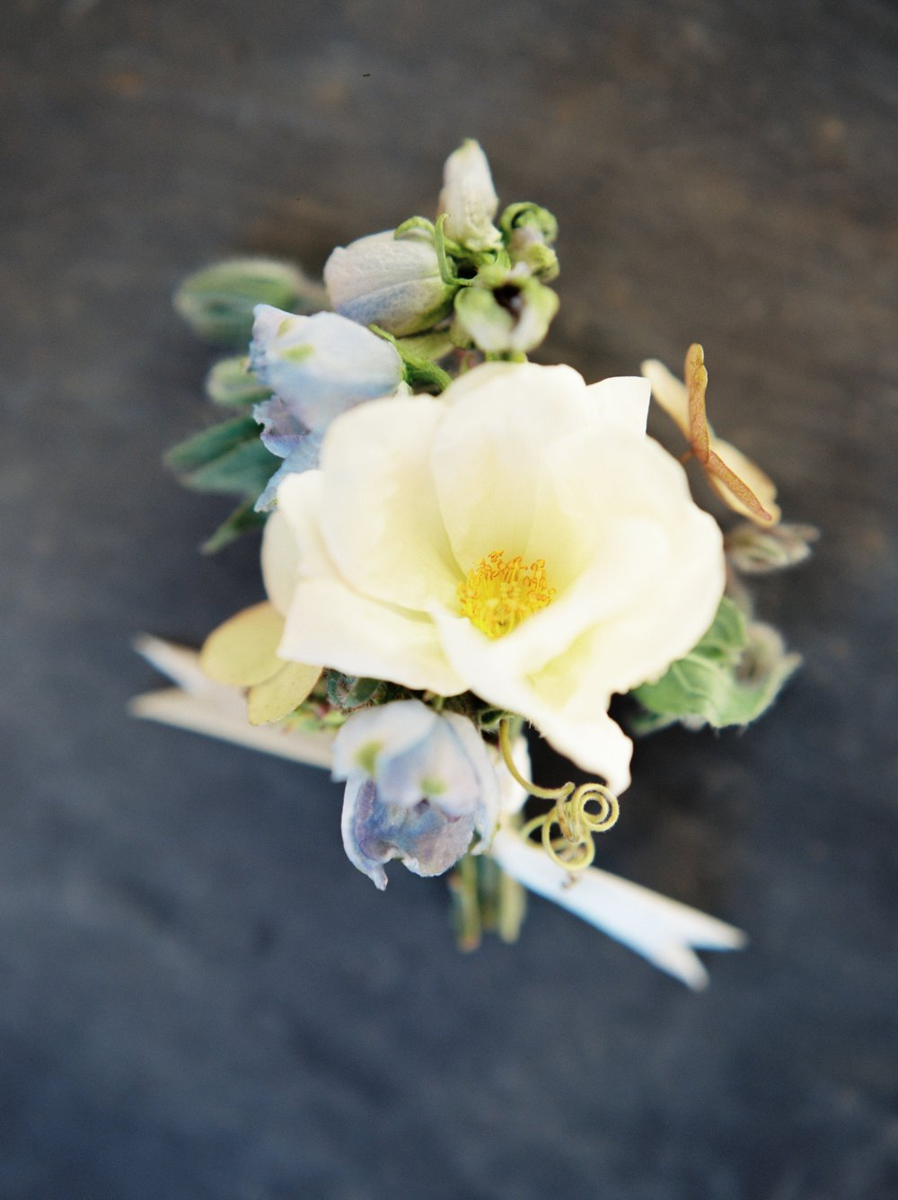 marcie meredith- graylyn estate styled shoot- nc wedding photographer-053.jpg
