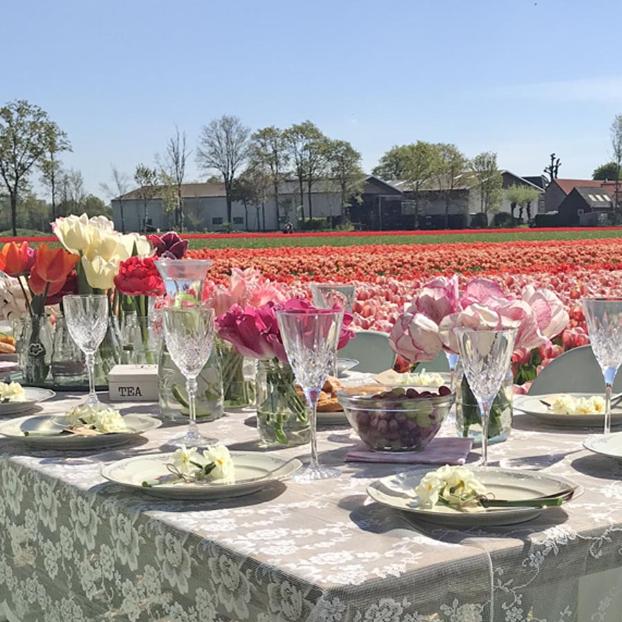 Lunch at our tulip fields.jpg
