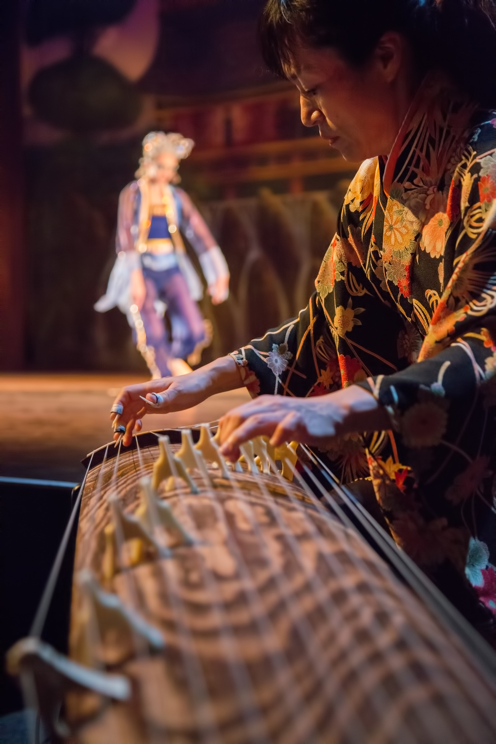 INTERNATIONAL KOTO PLAYER MITSUKI DAZAI  LIVE  IN THE PREMIERE OF BALLET FANTASTIQUE'S    TALES FROM THE FLOATING WORLD  :      HULT CENTER, 2014 // PHOTO: DAVID PUTZIER