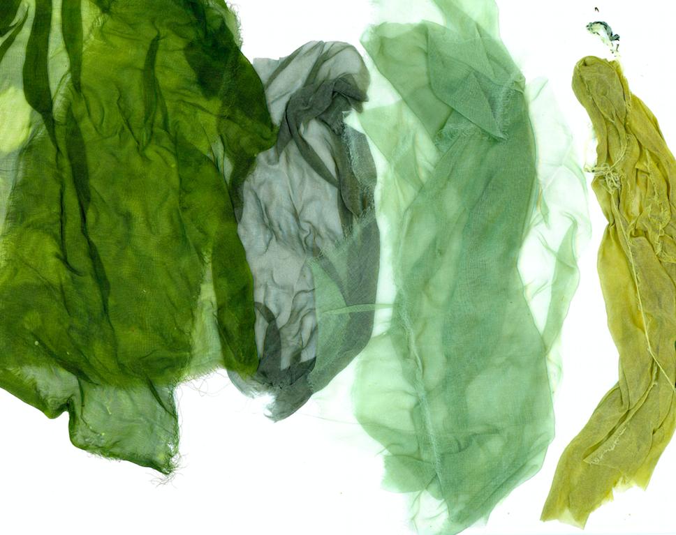 Malai'ai.Greens.png