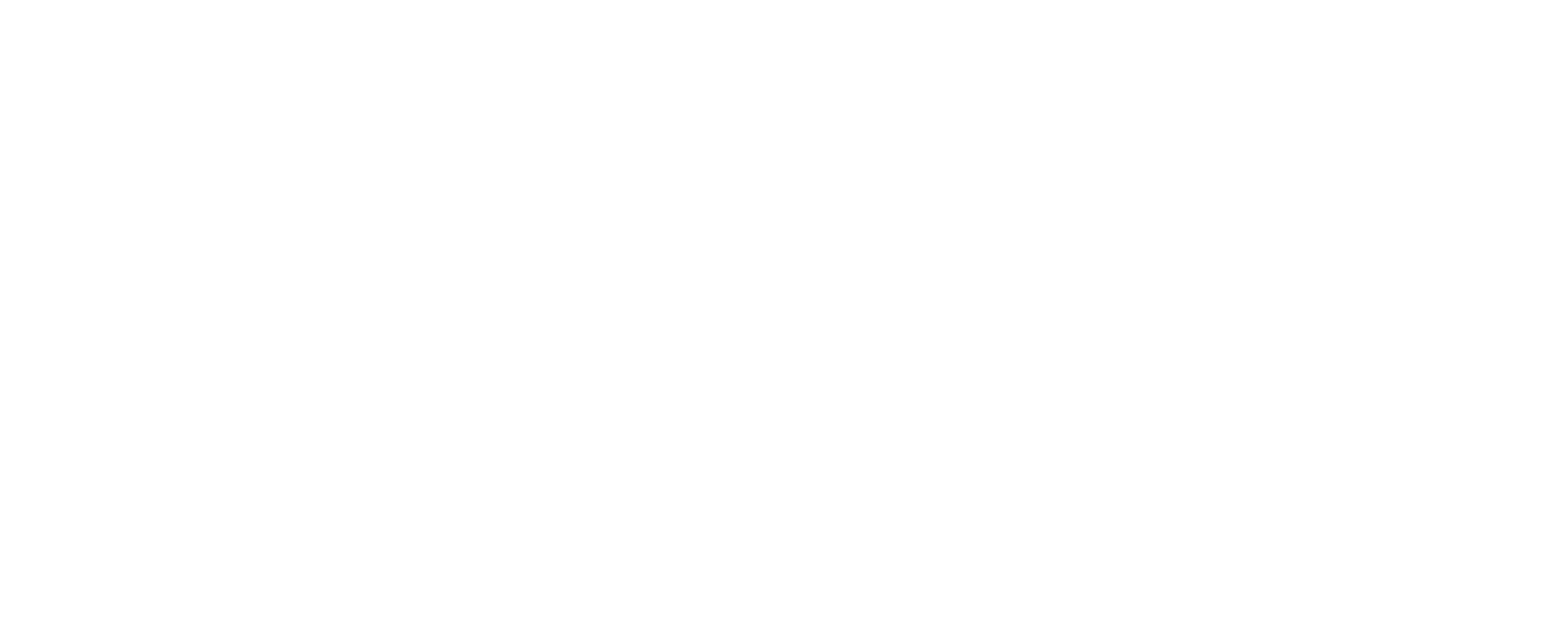 Adolph Agency Inc.