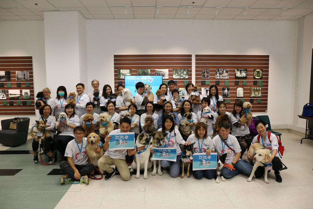 Dr. Pet therapy animals and volunteers at the event held 30 November 2017 at HKBU Library - Click the photo to see the full album on Flickr
