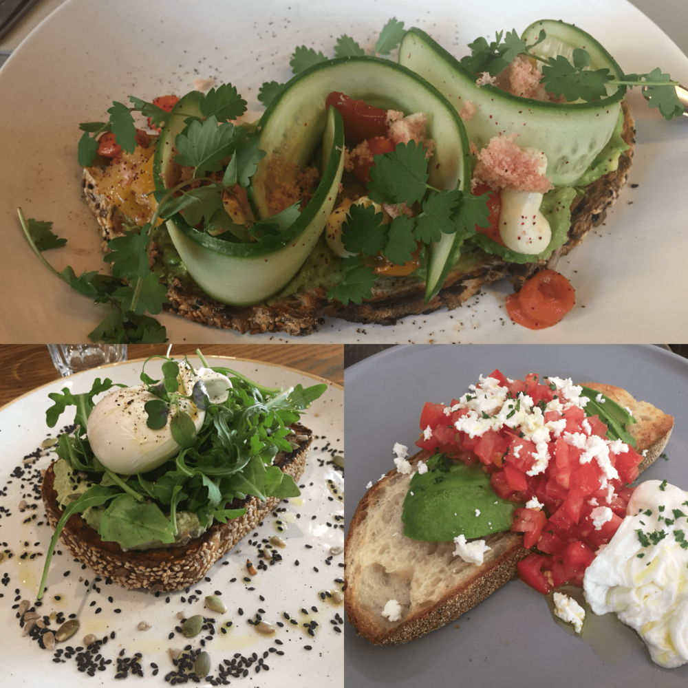Assortment of avocado toasts I had in Australia