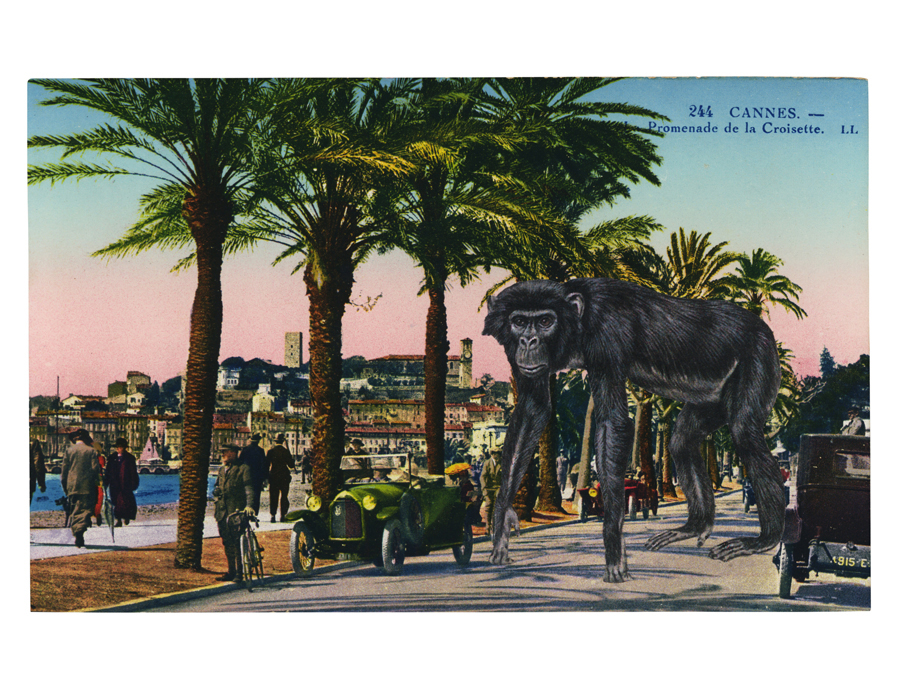Gracia Haby,  The Cannes Stomp ,   2012, postcard collage