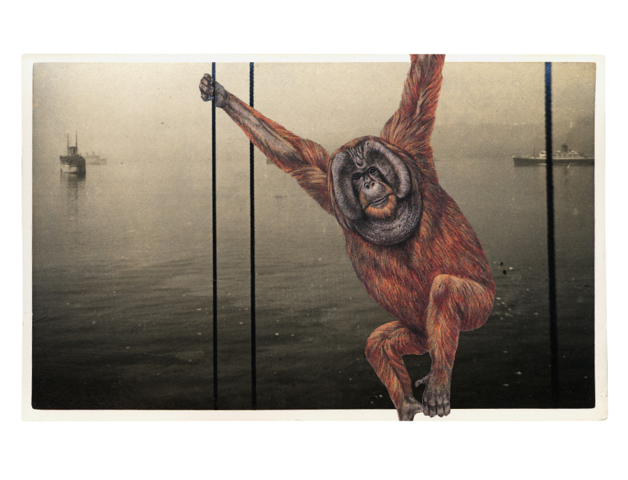 Gracia Haby,  With one triumphant swing ,   2012, postcard collage