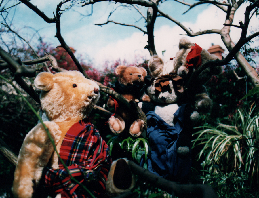Shakespeare's  Macbeth,  as illustrated by my own teddy bears in costume and with ketchup, from a spiral-bound book of fourteen photos, accompanied by hand-written abridged text, collage elements on photos and additional graphics, c. 1988