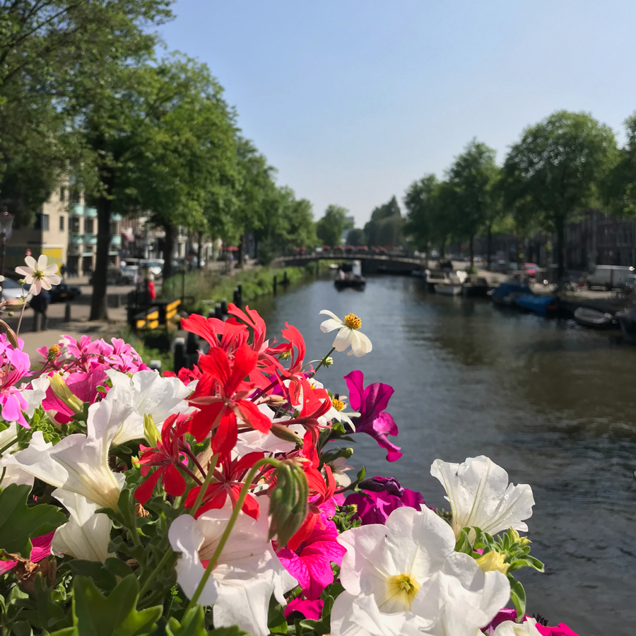 gracialouise_frenchconnections_netherlands161.jpg