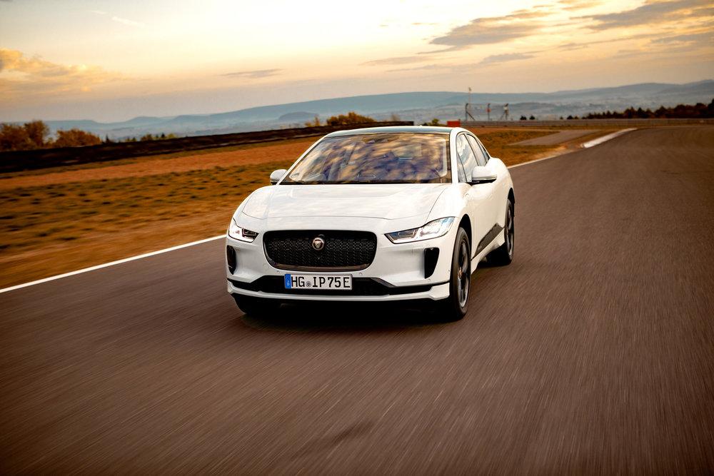 GCOTY_00153 Jaguar 3.jpg