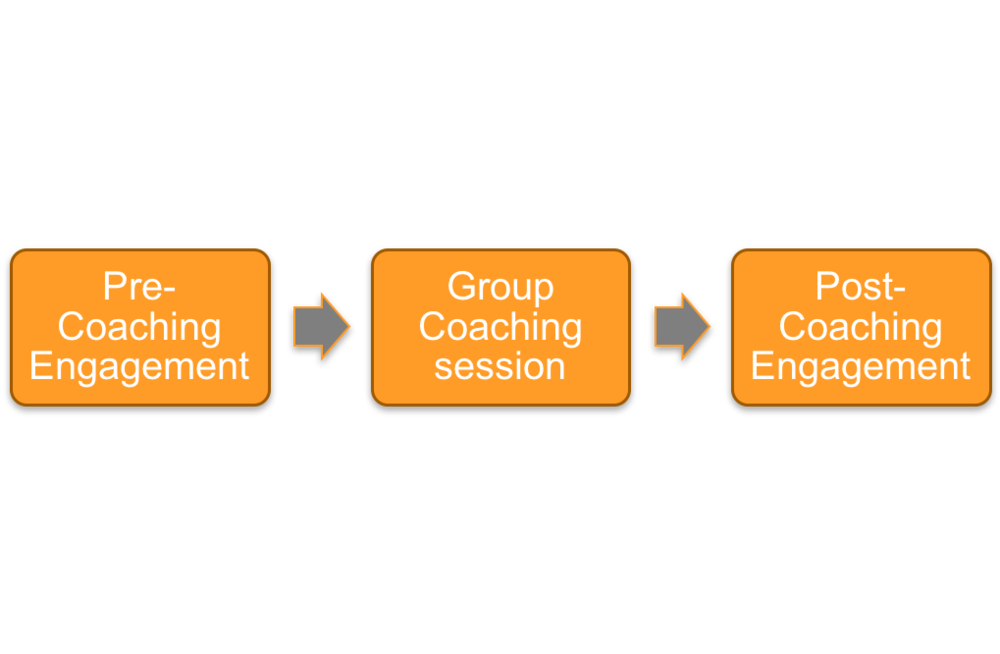 Consultant-Led Coaching Approach