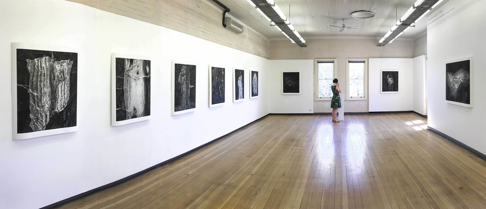 ' Anatomy of Deep Creek Longitude -035.655200, Latitude unknown ' was exhibited in Gallery 2 at the Adelaide Central School of Art in late 2016. Works from the series also exhibited at the  Perth Institute of Contemporary Art   (PICA)  and the  SASA Gallery  in Adelaide