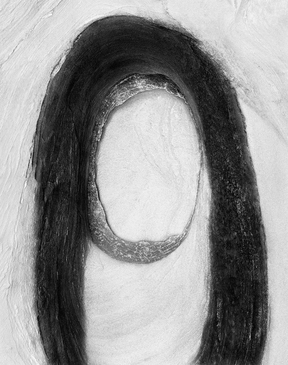 Christopher Houghton,2015, Elder ,110cm x 90cm.