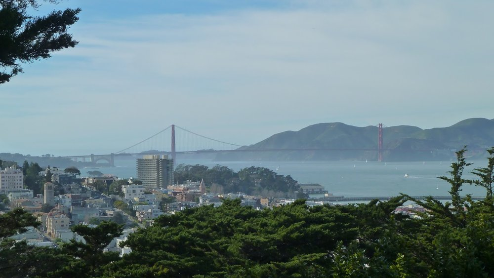 View from Telegraph Hill