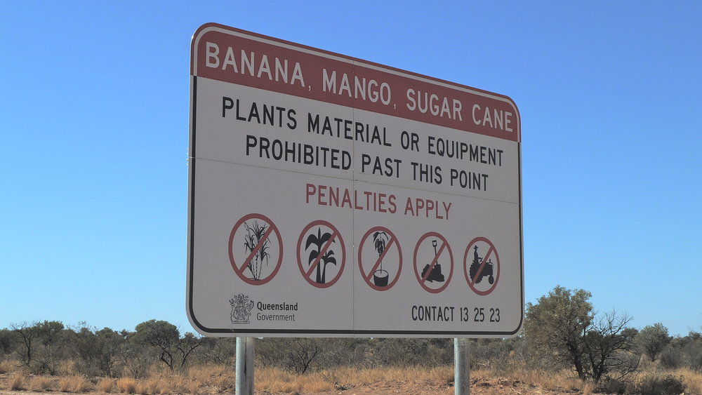 Welcome to Queensland: beware the fruit police