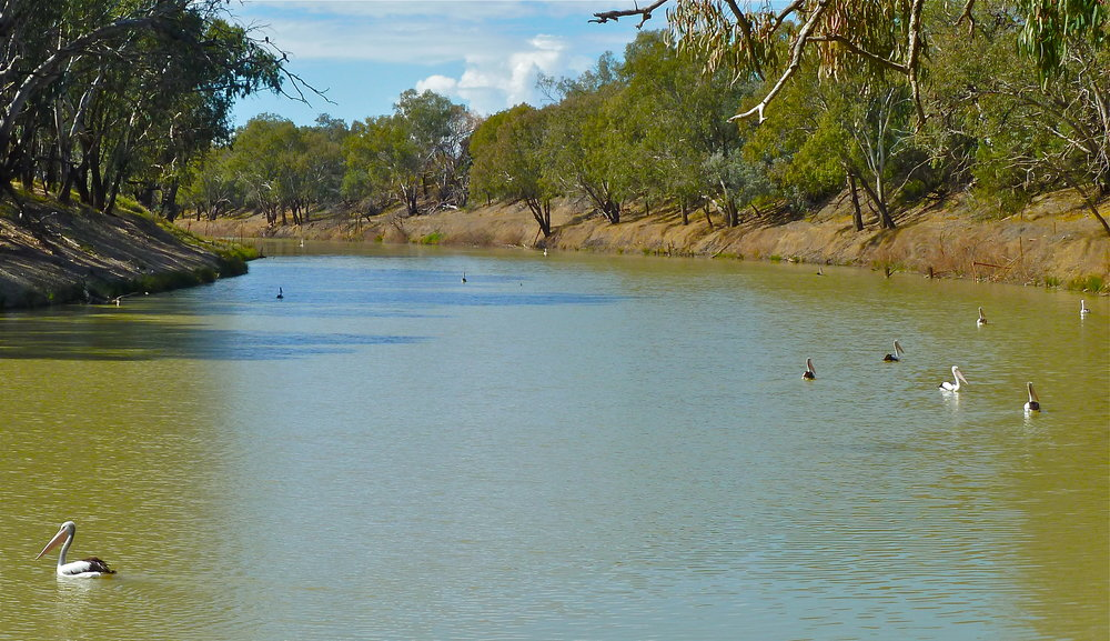 Darling River at Bourke, New South Wales