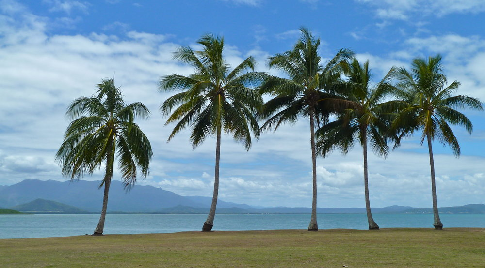 Looking to the Coral Sea and coast north of Port Douglas, Far North Queensland