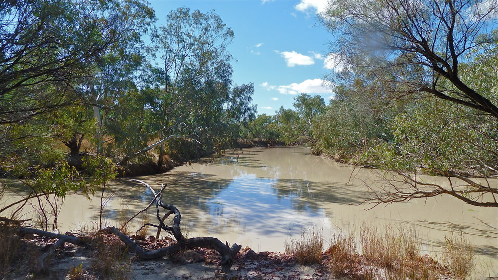 The Bulloo River at Thargomindah